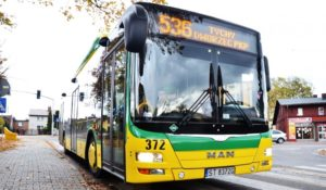 autobus-536