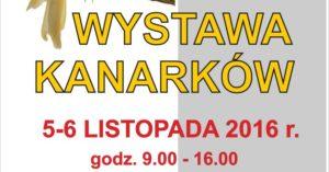 wystawa-kanarkow-min