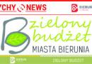 100 000 złotych na zielone projekty obywatelskie w Bieruniu.