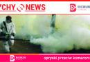 Opryski przeciw komarom od 5 lipca.